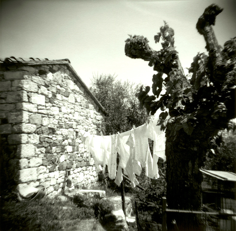 Laundry-with-Tree---Version-2